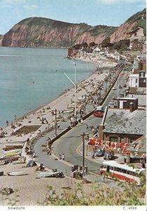 Devon Postcard - Sidmouth - Showing Beach - Ref AB3004