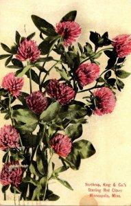 Minnesota Minneapolis Sterling Red Clover Northrup King & Company Seedsmen 1910