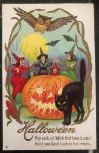Mint Vintage USA Picture Postcard PPC Cover Good Luck On Halloween Black Cat