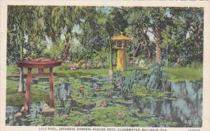 Florida Clearwater Belleair Lily Pool Japanese Garden Eagles Nest