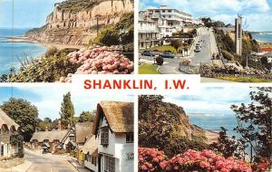 Shanklin Isle of Wight, The Old Village Hydrangeas Luccombe
