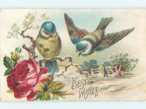 Pre-Linen BEAUTIFUL LARGE BIRDS WITH TOBOGGAN SLED SCENE HJ4459