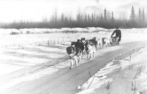 RPPC Dog Sled Team Huskies Dogs c1940s Vintage Photo Postcard