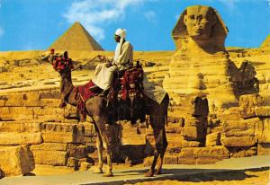 Vintage 1974 Postcard Camel, Giza - The Sphinx and Mykerinos Pyramid, Egypt #E