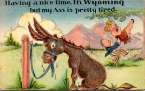 Wyoming Humour Having A Nice Time But My Ass Is Pretty Tired 1949