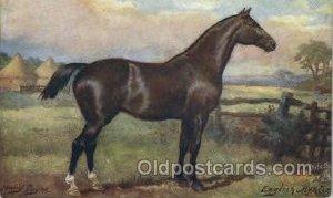 Artist Harry Payne, English Hunter, Horse, Horses, Postcard Postcards Unused
