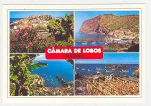 Camara de Lobos (MADEIRA), 70s