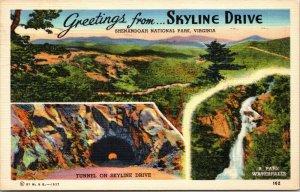 1940s Shenandoah National Park Postcard Greetings from SKYLINE DRIVE Linen VA