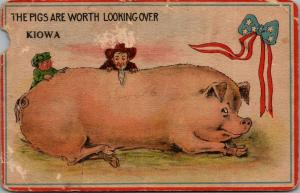 Kiowa KS~Scottish Boy~Chin-Beard Hick w/Exaggerated Pigs Worth Looking Over~1915