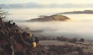 Postcard Morning Mist, Ullswater, Lake District H89