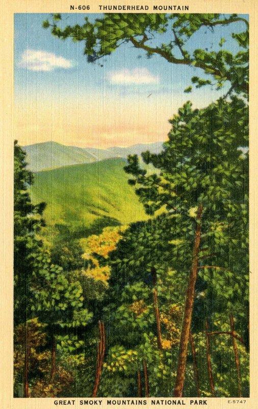 Great Smoky Mountains Nat'l Park - Thunderhead Mountain