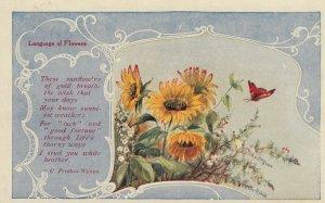 Language of Flowers , Sunflower , 00-10s