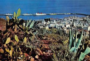 Spain Santa Cruz de Tenerife Vista Panoramica del Puerto Postcard