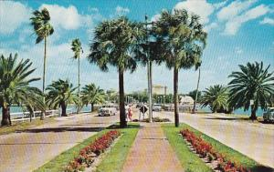 Florida Saint Petersburg Tropical Memorial Causeway Between Clearwater And It...
