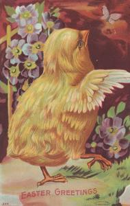 Easter Greeting, Chick, 1900-10s