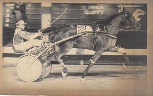 BREEDERS STAKES Harness Horse Race , AMANDA STEELER winner, 1983
