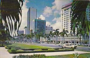 Florida Miami Biscayne Boulevard From Bayfront Park