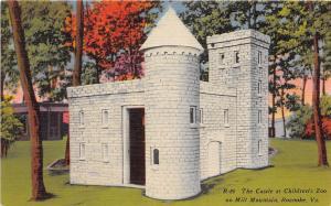 The Castle Children's Zoo Mill Mountain Roanoke Virginia 1940s postcard