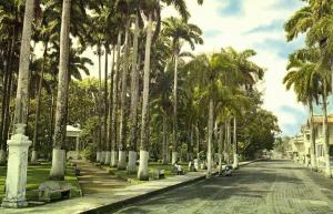 costa rica, LIMON, Partial View of the Vargas Park (1960s)