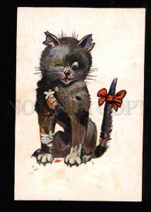 047584 CAT Gangster after Fight UnSign WAIN vintage RUSSIAN PC