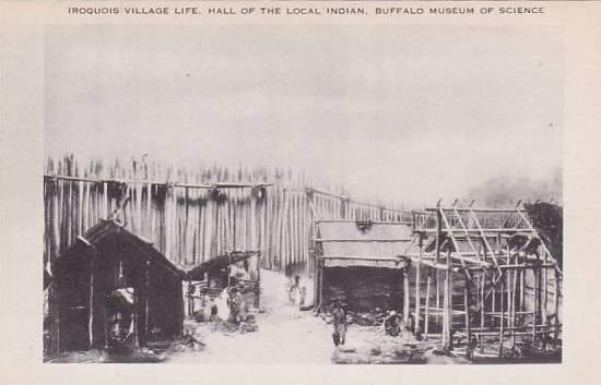 New York Buffalo Iroquois Villege Life Hall Of The Local Indian Buffalo Museu...