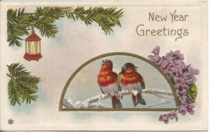 Red Breasted Snow Birds Swallow/Grosbeak on Ice Covered Branch New Year Greeting