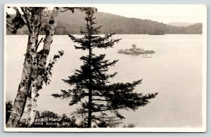 Silver Bay New York~Jabe Pond Island~View From Birch Trees on Shore~1925 RPPC