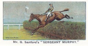 Sergeant Murphy Winners On The Turf 1923 Grand National Horse Racing Cigarett...