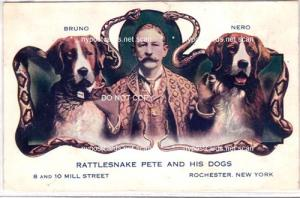 Rattlesnake Pete & His Dogs, Rochester NY