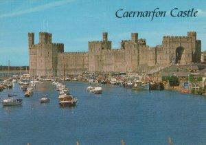 Wales Postcard - Caernarfon Castle From The River    RR8571