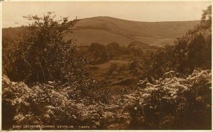 (y80) Luccombe Common Ventnor - Isle of Wight Postcard
