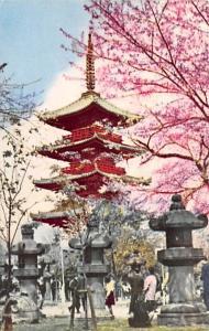 Japan Old Vintage Antique Post Card Ueno Park Unused