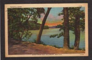 NY Greetings from DeLANCEY NEW YORK PC Linen Postcard