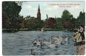 Boston, Mass, Feeding the Swans in Public Garden