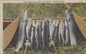 Michigan Big Rapids Gretings From A Days Catch Fishing