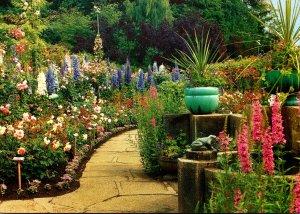 Canada British Columbia Victoria Butchart Gardens The Rose Garden