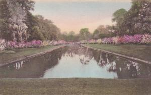 Long Lake, Middleton Place Gardens, CHARLESTON, South Carolina, 1900-1910s