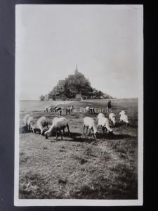France NORMANDY Le Mont Saint Michel showing Sheep Old RP Postcard by Laurent