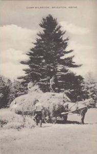 Maine Bridgton Camp Milbrook Artvue