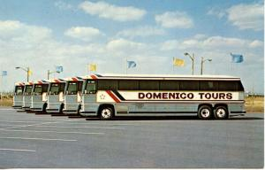 NJ - Bayonne. Domenico Tours (Buses)