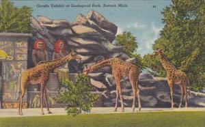 Michigan Detroit Giraffe Exhibit At Zoological Park