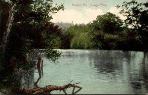 Maine Naples Scene On Songo River 1910