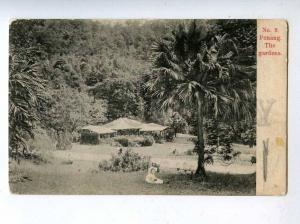 206570 Malaysia PENANG garden view Vintage postcard