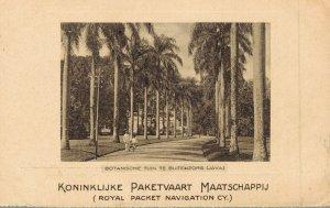 Indonesia - Botanical Garden Buitenzorg Java Dutch East Indies 04.72