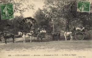 CPA Cote d'Argent - ARCACHON - Promenade en Foret (140061)