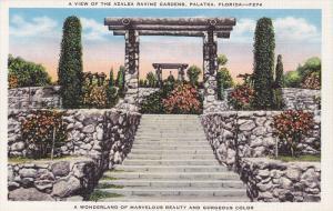 A View of the Azalea Ravine Gardens, Palatka, Florida, 30-40s