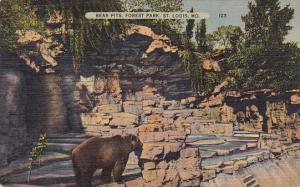Bear Pits Forest Park Saint Louis Missouri 1941