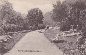 New Ground , Jesmond Dene, public park, Newcastle upon Tyne, England , 00-10s