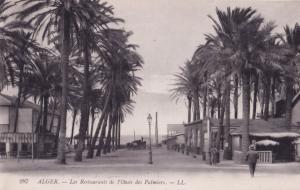 Alger Algeria Les Restaurants De L'Oasis Des Palmiers Postcard