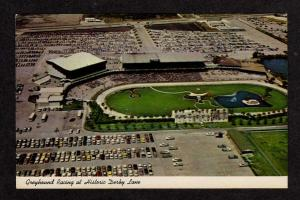 FL Greyhound Dog Racing Race Track St Petersburg Florida Postcard Derby Lane